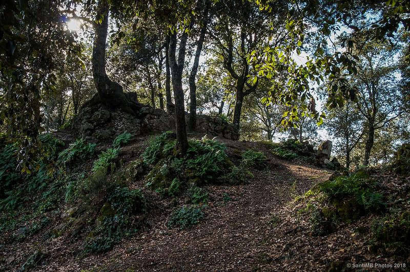 Ruinas entre el Castell de Montsoriu y la Torre de les Bruixes