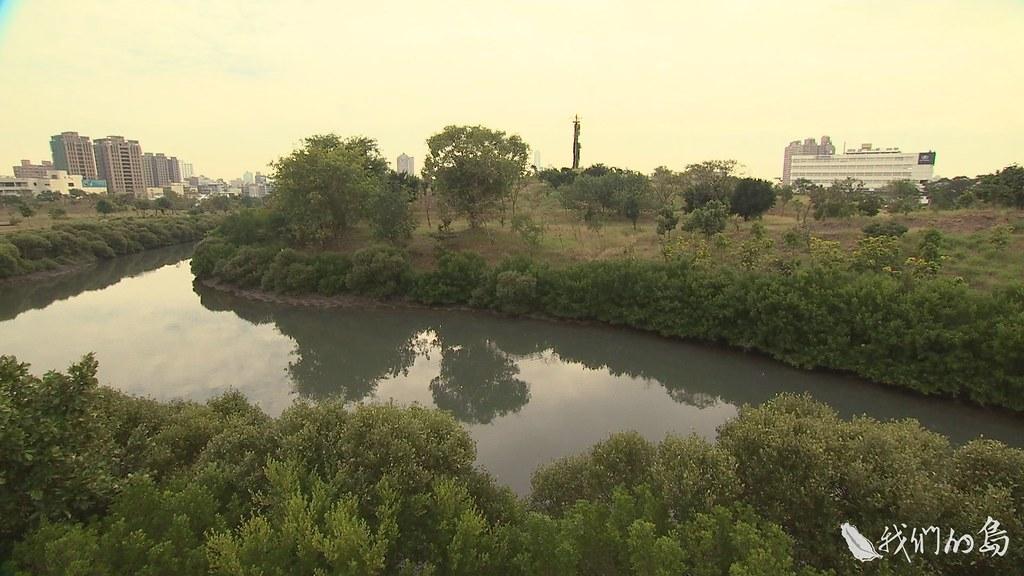 940-2-2高雄中都濕地曾被選為全台十大最美濕地之一,很多人不知道它曾是合板工廠廠房所在地。