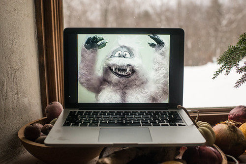 Yeti on My Laptop in Messy Kitchen | by goingslowly