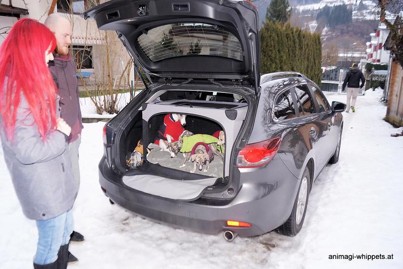 Im Auto der
