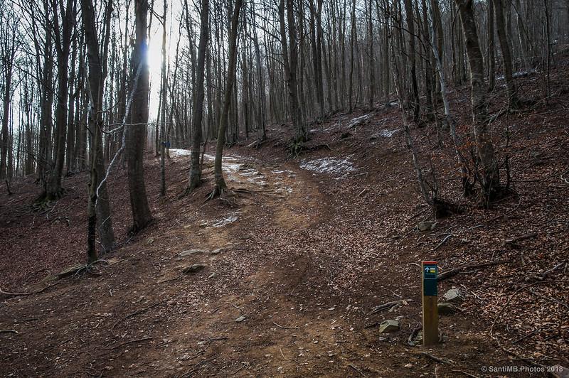 Camino al Turó de l'Home desde la Font de Passavets
