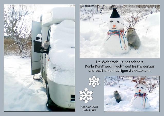 Fasching Fasnet Karneval Februar 2018 ... Karla Kunstwadl ... Kostüm, Berliner Kräppel, Schnee im Schwarzwald ... Fotos von Margit H