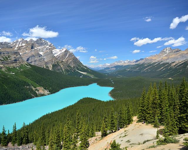 El lago Peyto, posiblemente el mirador más espectacular que ver en Canadá