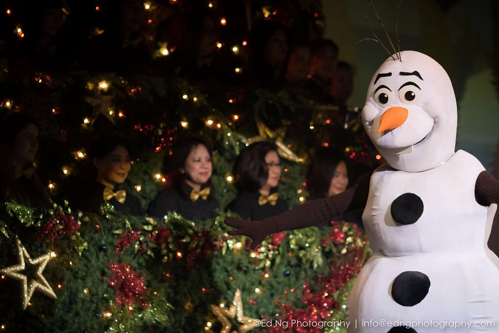 Vancouver singing christmas tree ed ng photography flickr