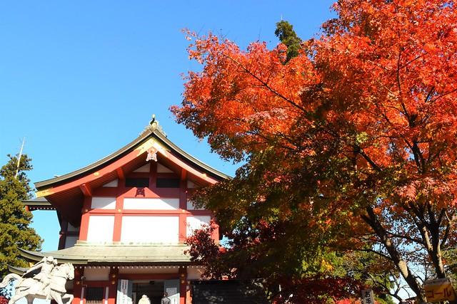 御岳山登山 御岳神社の紅葉