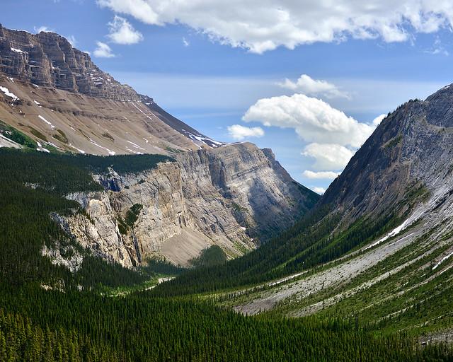Valles repletos de árboles en el Parque Nacional de Banff