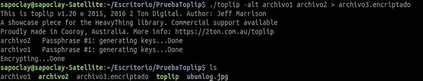 toplip-encriptado-dos-archivos