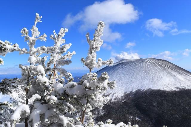 浅間プリンと樹氷