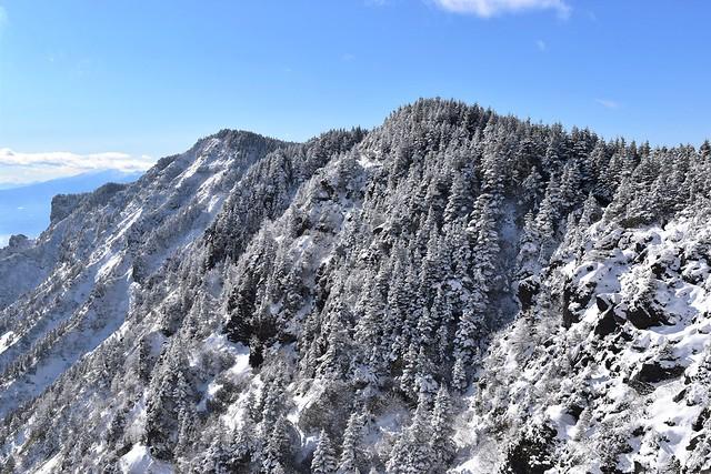 浅間山外輪の樹氷
