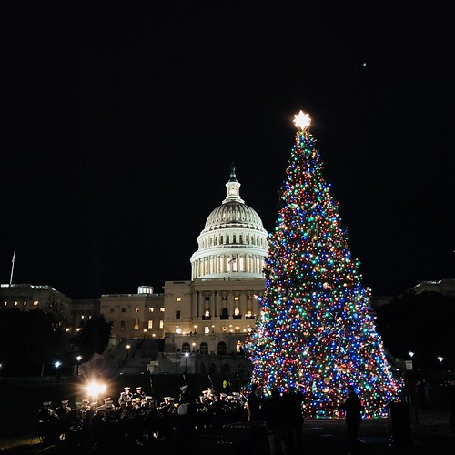 Capitol Christmas Tree.From Montana With Light Usda