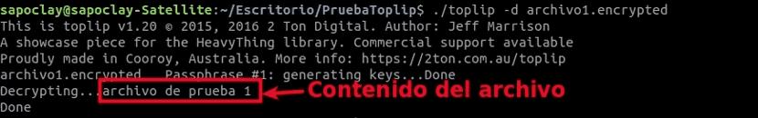 toplip-desencriptado-archivo-solo