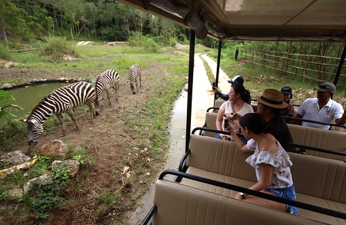 African Savannah - Cebu Safari & Adventure Park | by eazytraveler