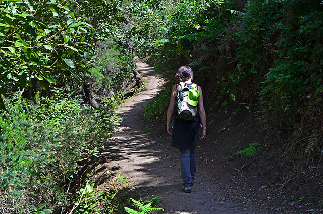 Real Tenerife Island Walks, a series of self-guided walking notes that show you the best of Tenerife's walking trails