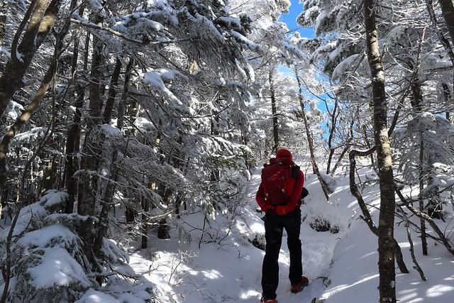 黒斑山 樹氷の森