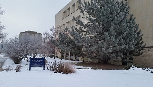 Exterior photo of the Mudd Library in winter with snow covering the ground, tree branches, and blue library sign.