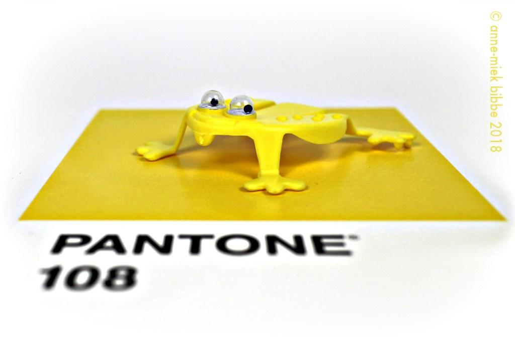 PANTONE 108 GEEL YELLOW GIALLO JAUNE GELB