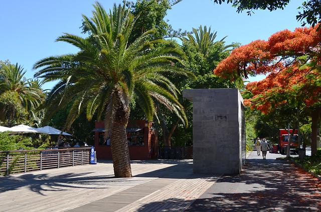 Parque Garcia Sanabria, July, Santa Cruz, Tenerife