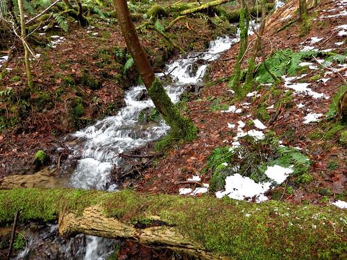 Stream flowing down Parkin Clough