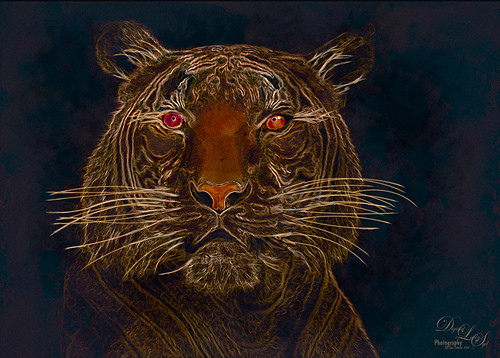 Image of a glowing Malaysian Tiger