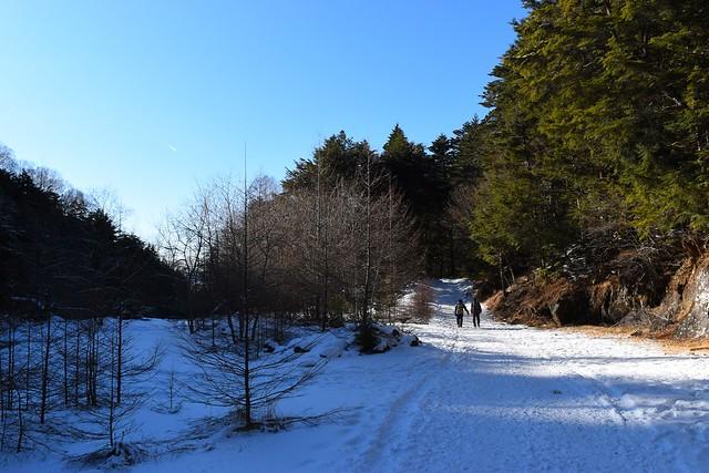 冬の八ヶ岳・北沢コース