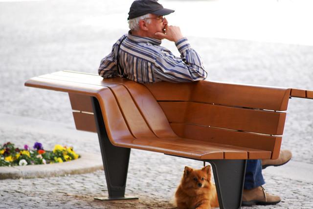 Spitz, pass auf - Loulou, fais attencion - Attenti al carne - Watch, doggie, watch - Spits, pas op - Foto: Brigitte Stolle