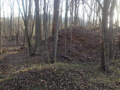 Upper Sugar Hill Creek Dam Ruins - East Side