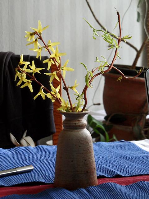 Kleine Blumenvase auf einem Tisch, darin je ein Zweig Forsythie und Korkenzieherweide