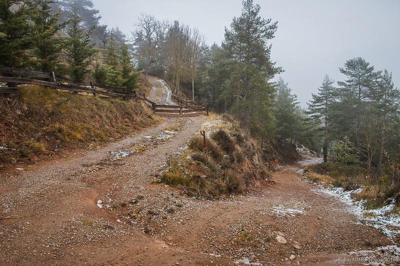 Camino de Cal Toni