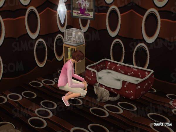 The Sims 2 Pets Teach Command Shake