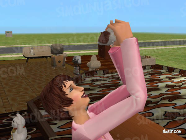 The Sims 2 Pets Hamsters