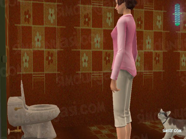 The Sims 2 Pets Teach Command Use Toilet