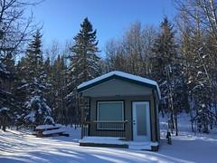 Elkwater Cabins