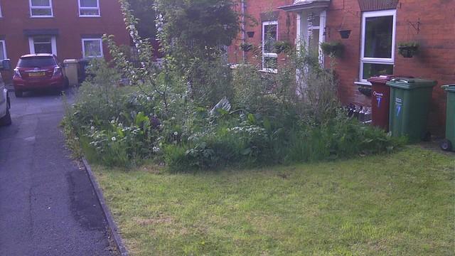 Front garden. Photo: Stephen Jones