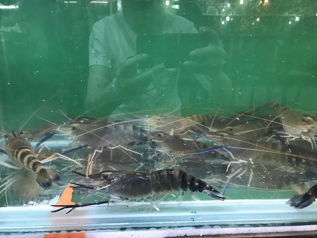 2018春节泰国曼谷-华欣-塔沙革/Ban Krut-苏梅岛一路向南自驾游 泰国旅游 第170张