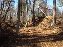 Upper Sugar Hill Creek Dam Borrow Cut 1