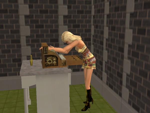 The Sims 2 Open For Business Cashier Kasiyer