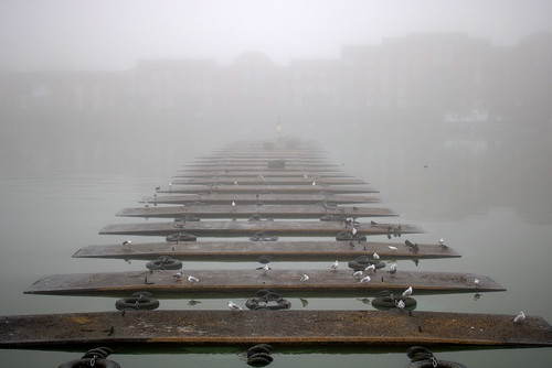 Foggy Preston Docks | by Tony Worrall