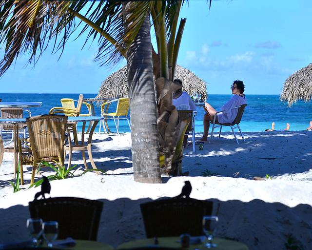 Comiendo junto a pájaros tropicales, el mar y palmeritas al fondo en Cayo Levisa