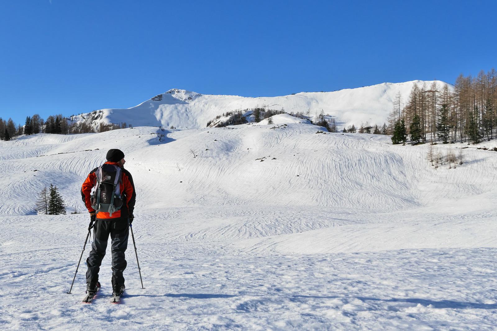 Zdecimovaná sněhová pokrývka