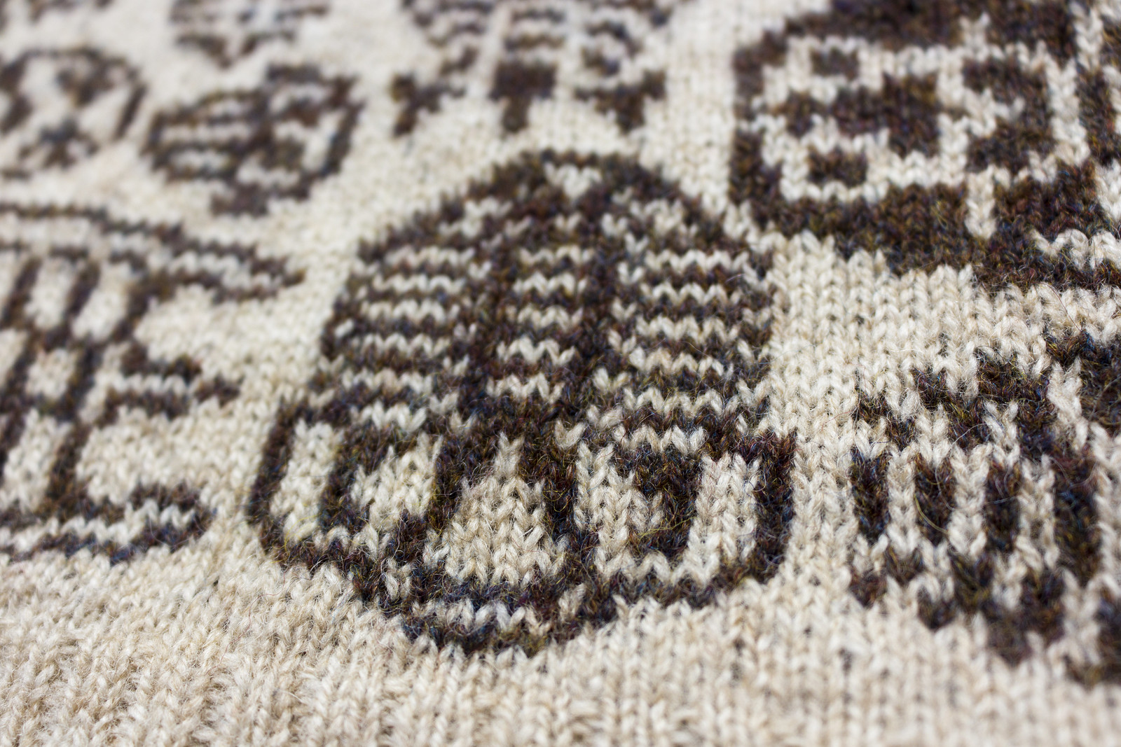 close up knitted trilobite motif