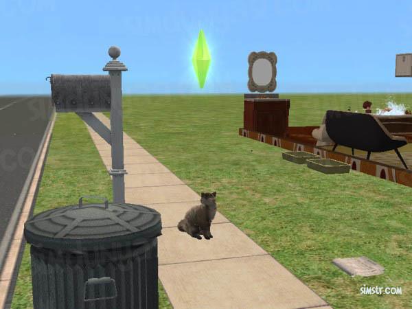 The Sims 2 Pets Catch Sinek Kovalayan Kedi