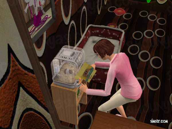 The Sims 2 Pets Hamsters Feed
