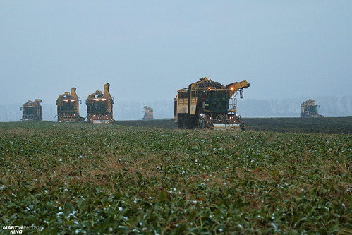 Sugar Beet Harvest | ROPA // FENDT // HAWE | by martin_king.photo