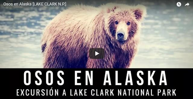 Ver vídeo de nuestra experiencia con los osos en Alaska