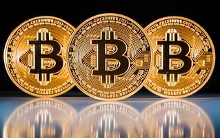Bitcoin Death Pool