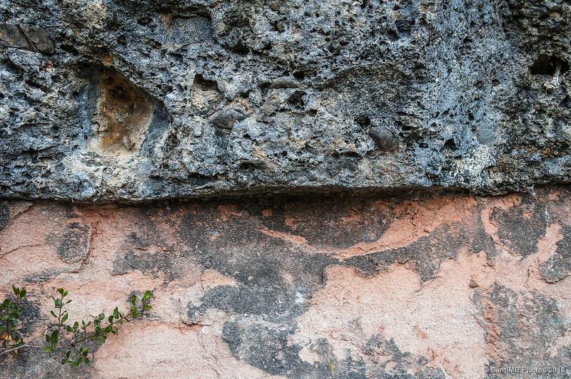 Pared de roca del sendero del molino de Pedret