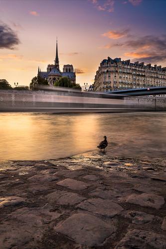 Le 09 Septembre 2017 à Paris.<a href='http://www.mattfolio.fr/boutique/698/'><span class='font-icon-shopping-cart'></span><span class='acheter'> Acheter</span></a>