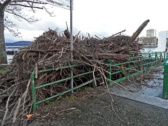 Treibholz, das sich am Geländer eines Schiffsanlegers angesammelt hat