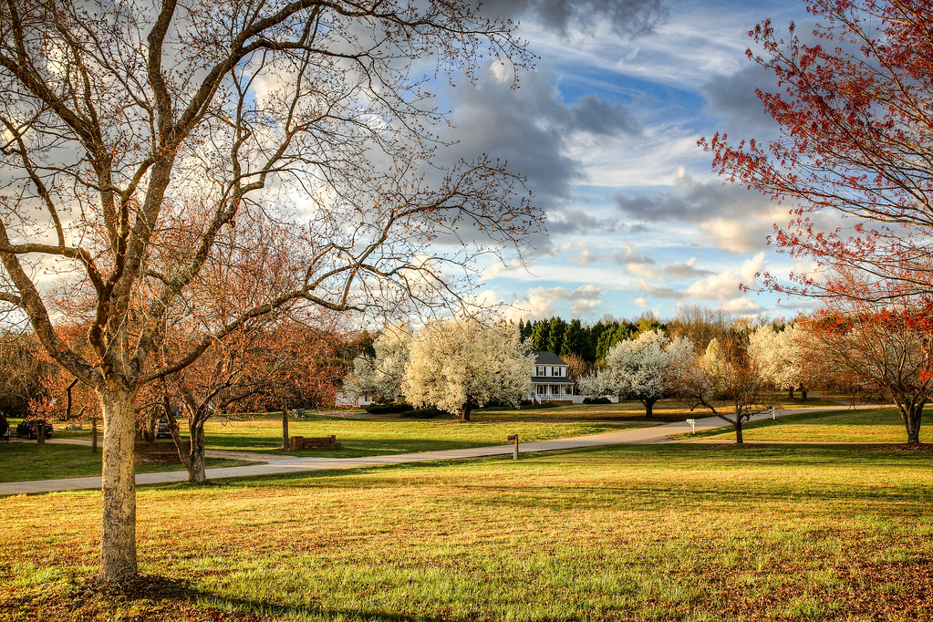 ... Early spring landscape - Anderson S.C.   by DT's Photo Site - Anderson  S.C. - Early Spring Landscape - Anderson S.C. DAVID THOMPSON Flickr