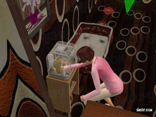 The Sims 2 Pets Hamsters Clean